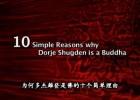 视频 - 为何多杰雄登是佛的十个简单的理由