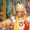 辛辛那提神使在印度出现