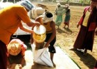 萨甘丹寺种稻